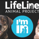 Lifeline Animal Project
